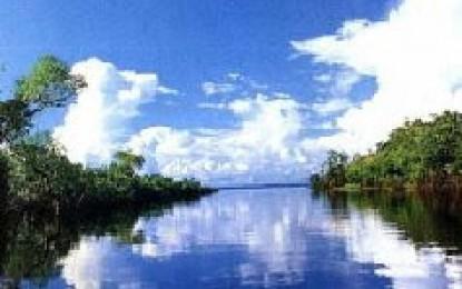El intento de neocolonización de la Amazonia