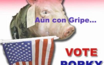 Mi pobre porcino