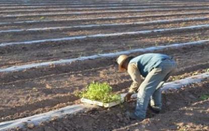 Mendoza crea banca rural