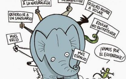 Presentan proyecto de ley para la reconversión del zoo