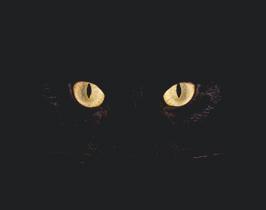 Sin título-3