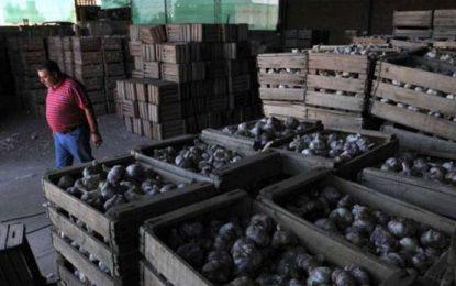 Denuncian falsas inspecciones en una empacadora y exportadora de ajos