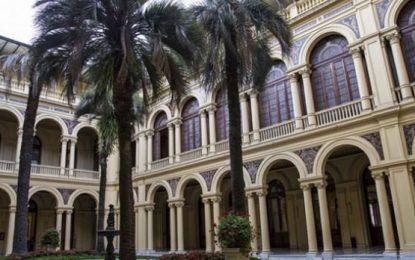 La verdad sobre la palmera de la Casa Rosada