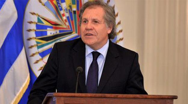 Delincuencia política en la OEA en servicio de Estados Unidos