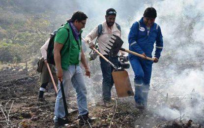 Ofensiva del 'terrorismo ambiental' contra Evo Morales